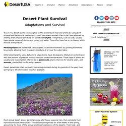 Desert Plant Survival