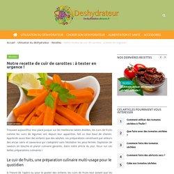 Déshydratation-Aliments.fr : tout savoir sur le déshydrateur