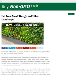 Eat Your Yard! Design an Edible Landscape