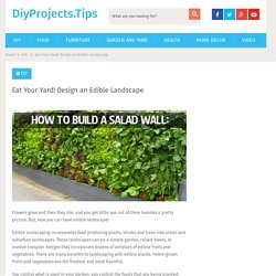 Eat Your Yard! Design an Edible Landscape - DiyProjects.Tips