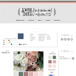 find your palette