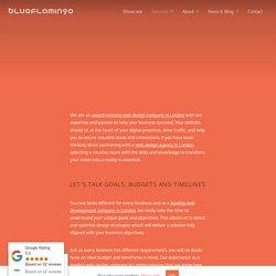 Web Design Services - Blue Flamingo UK