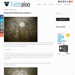 Design of the Week: Forms inNature