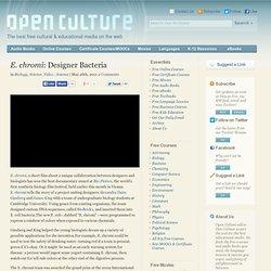 E. chromi: Designer Bacteria