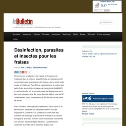 LE BULLETIN 07/04/15 Désinfection, parasites et insectes pour les fraises