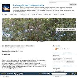 La désintoxication des reins: 2 recettes - Le blog de stephanie-et-nadia - Aurora
