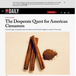 The Desperate Quest for American Cinnamon
