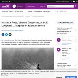Hartmut Rosa, Vincent Desportes, A. et F. Laugrand ... Surprise et ralentissement
