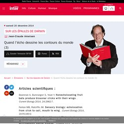 Quand l'écho dessine les contours du monde (3) du 20 décembre 2014 - France Inter