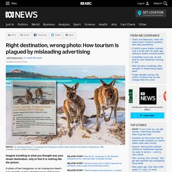 Right destination, wrong photo: How tourism is plagued by misleading advertising