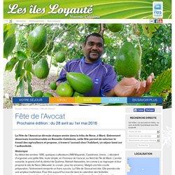 Destination Îles Loyauté - Fête de l'avocat à Maré