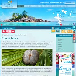 Welcome to the Official Destination Website for the Seychelles Islands - Flora and Fauna