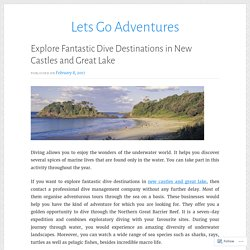 Explore Fantastic Dive Destinations in New Castles and Great Lake
