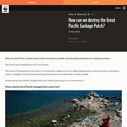 How can we destroy the Great Pacific Garbage Patch? – WWF-Australia