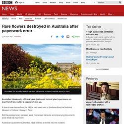 Rare flowers destroyed in Australia after paperwork error