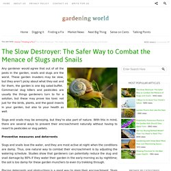 The Slow Destroyer: The Safer Way to Combat the Menace of Slugs and Snails