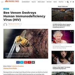 Bee Venom Destroys Human Immunodeficiency Virus (HIV) - Waking Times Media