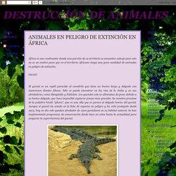 DESTRUCCIÓN DE ANIMALES: ANIMALES EN PELIGRO DE EXTINCIÓN EN ÁFRICA