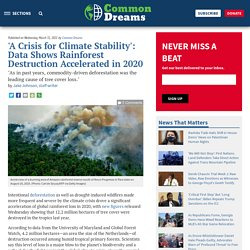 31 mars 2021 'A Crisis for Climate Stability': Data Shows Rainforest Destruction Accelerated in 2020