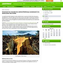 Comment les conseils du cabinet McKinsey conduisent à la destruction des forêts