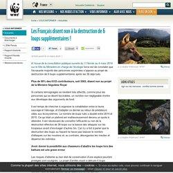 Les Français disent non à la destruction de 6 loups supplémentaires !