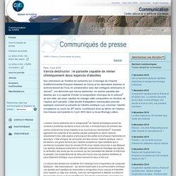 CNRS 03/06/15 Varroa destructor : le parasite capable de mimer chimiquement deux espèces d'abeilles