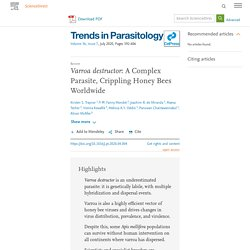 TRENDS IN PARASITOLOGY - JULY 2020 - Varroa destructor: A Complex Parasite, Crippling Honey Bees Worldwide