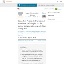 Research in Veterinary Science Volume 135, March 2021, Impact of Varroa destructor and associated pathologies on the colony collapse disorder affecting honey bees