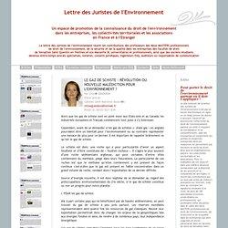 LETTRE DES JURISTES DE L'ENVIRONNEMENT 04/03/11 Le gaz de schiste : révolution ou nouvelle malédiction pour l'environnement ?