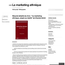 """Résumé détaillé du livre : """"Le marketing ethnique, utopie ou réalité"""" de Chantal Ammi"""