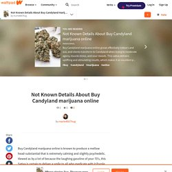 Not Known Details About Buy Candyland marijuana online - Not Known Details About Buy Candyland marijuana online