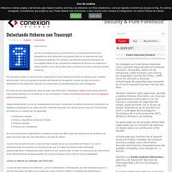 Detectando ficheros con Truecrypt