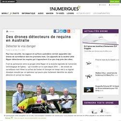Des drones détecteurs de requins en Australie