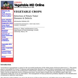 Detection of Potato Tuber Diseases & Defects fact sheet