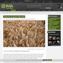 INRA 06/07/15 Détection du gluten désamidé