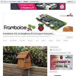 Détection de mouvement sur une mangeoire d'oiseau filmée par un Raspberry Pi - Framboise 314, le Raspberry Pi à la sauce française....
