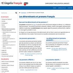 Les déterminants et pronoms – La grammaire française