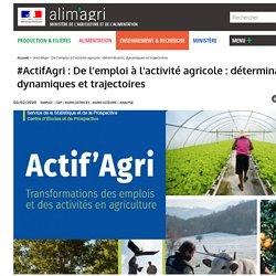 #ActifAgri: De l'emploi à l'activité agricole : déterminants, dynamiques et trajectoires