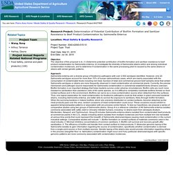 ARS USDA - Projet de recherche 2015 - Determination of Potential Contribution of Biofilm Formation and Sanitizer Resistance to Beef Product Contamination by Salmonella Enterica