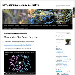 Developmental Biology Interactive