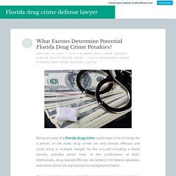What Factors Determine Potential Florida Drug Crime Penalties?