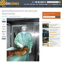 Mummified Iceman's Ancient Job Determined