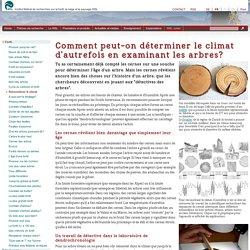 WSL Junior > Forêt > Comment peut-on déterminer le climat d'autrefois en examinant les arbres?