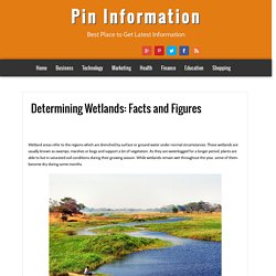 Pin Information: Determining Wetlands: Facts and Figures