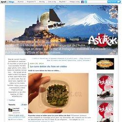 La cure detox du foie en vidéo : Asiatrek, du Mont Saint-Michel au Mont Fuji à vélo à voile