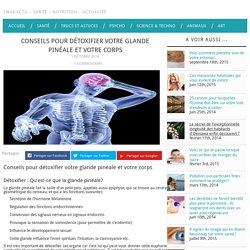 Détoxifier : Conseils pour détoxifier la glande pinéale et le corps