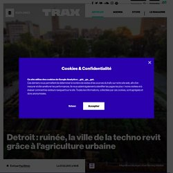 Detroit : ruinée, la ville de la techno revit grâce à l'agriculture urbaine