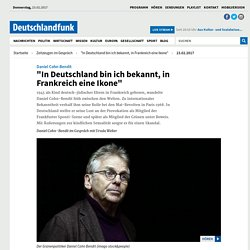 """Daniel Cohn-Bendit - """"In Deutschland bin ich bekannt, in Frankreich eine Ikone"""""""