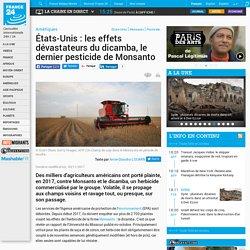 États-Unis: les effets dévastateurs du dicamba, le dernier pesticide de Monsanto