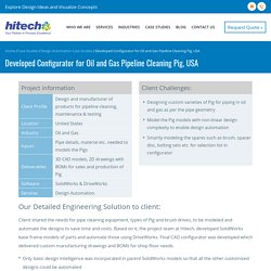 Configurator for Oil and Gas Pipeline Cleaning Pig, USA